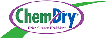 Chem-Dry Eco-Clean Logo